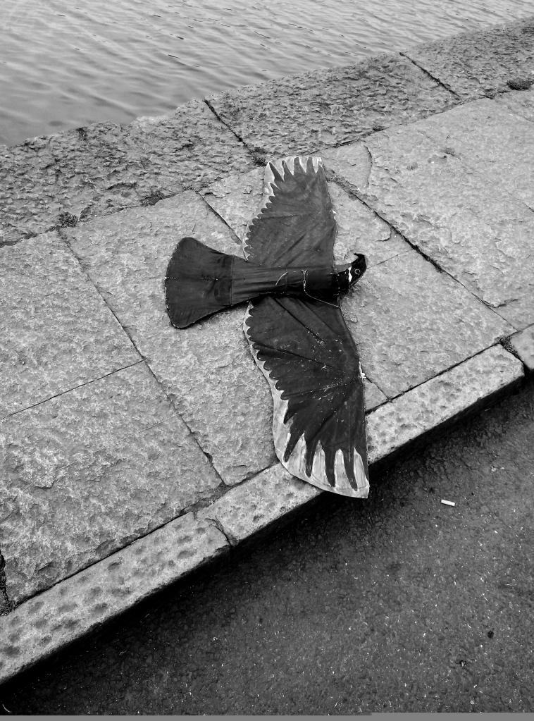 The_Dead_Bird